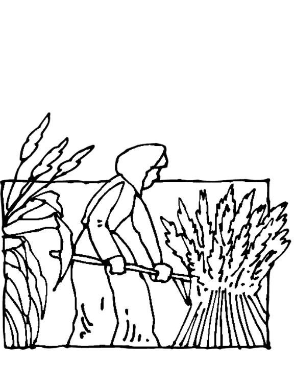field coloring page - pilgrim girl in field coloring page purple kitty