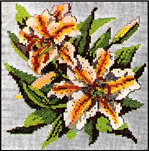 Lily Chart Pattern