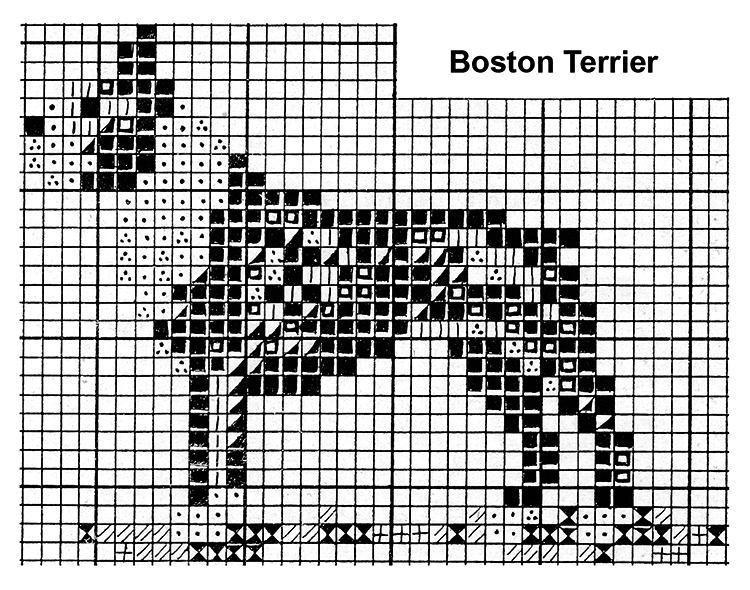 Boston Terrier Pattern